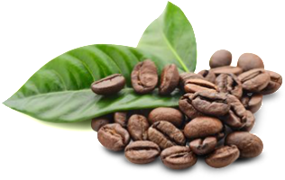 Koffein-Frei