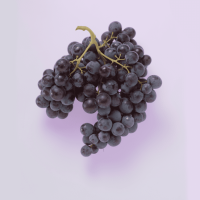 lavera-organic-grape-7e764