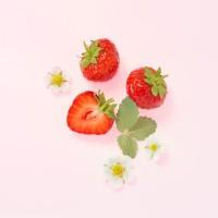 lavera-bio-erdbeere-11e4e